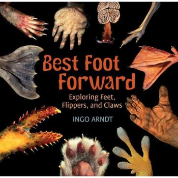 Best Foot Forward Nonfiction Picture Book Wednesday: Some beginning read alouds