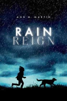 Rain Reign Favourites of 2014 There's a Book for That