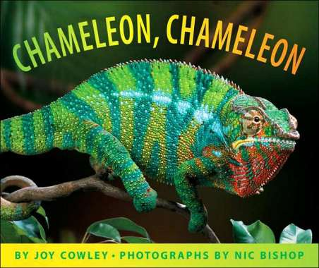 Nic Bishop photography for all ages and stages #NFPB2014 There's a Book for That