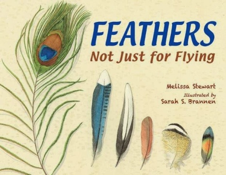 Feathers Not Just for Flying #nfpb2014 There's a Book for That