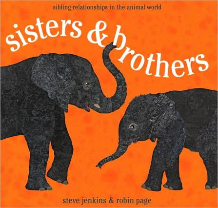 sisters and brothers  #IMWAYR There's a Book for That