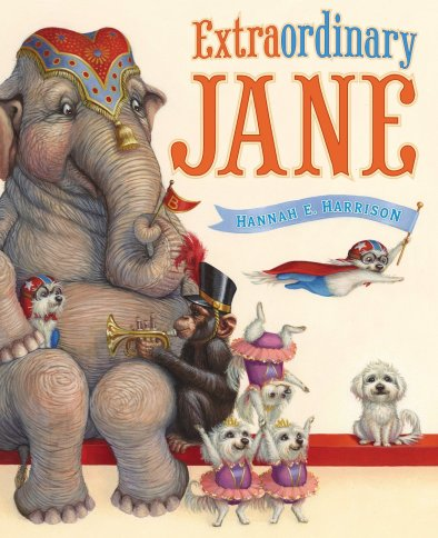 Extraordinary jane  #IMWAYR There's a Book for That July 7th 2014