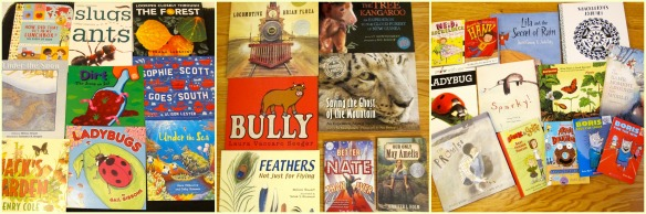Teaching with a passion for nonfiction picture books: Part 1