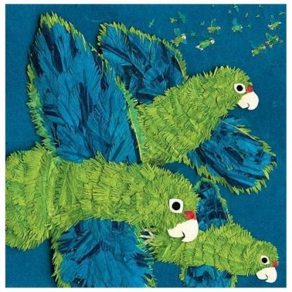 Parrots over Puerto Rico