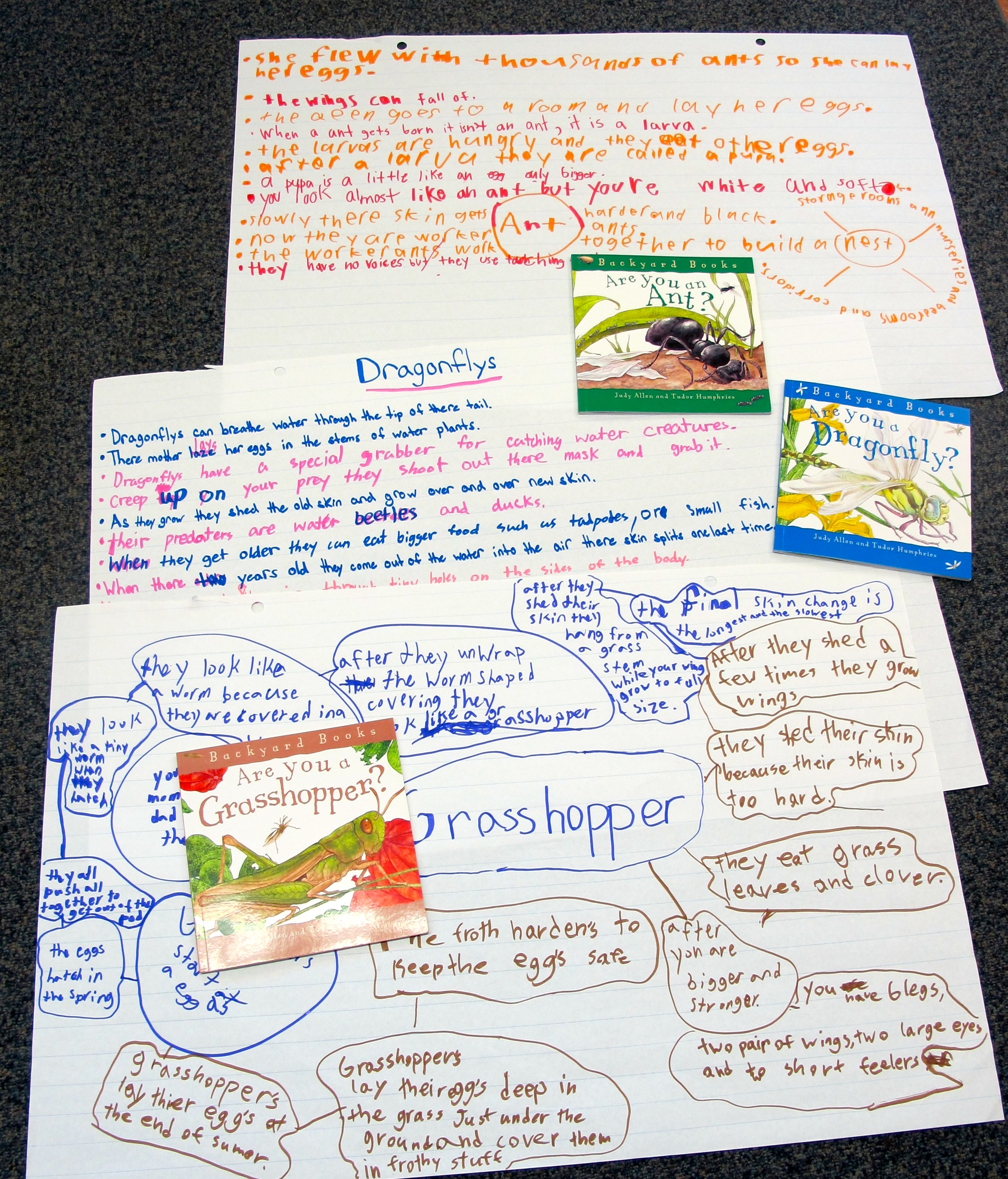 Teaching with a Passion for Nonfiction Books: Part 3 B