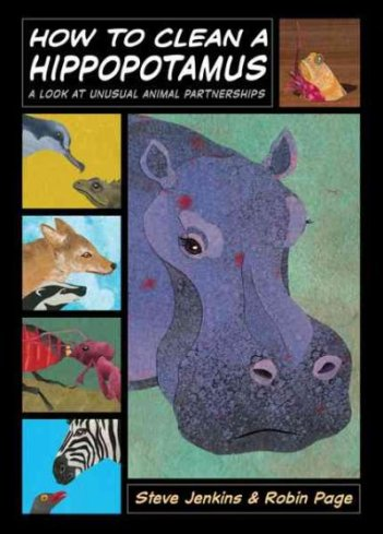How to Clean a Hippopotamus Nonfiction Picture Book Wednesday: A focus on Steve Jenkins titles