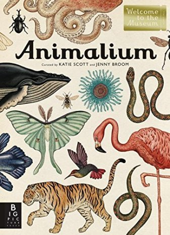 Animalium Nonfiction Picture Book Wednesday: My current TBR list, nonfiction style There's a Book for That