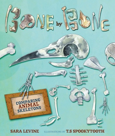 Bone by Bone Monday February 9th, 2015 #IMWAYR There's a Book for That