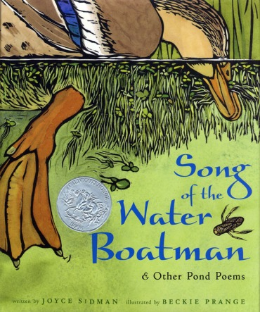 Songs of the Waterboatman Nonfiction Picture Book Wednesday: Water connects us all There's a Book for That