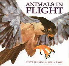 Animals in Flight by Steve Jenkins and Robin Page Monday February 2nd 2015 #IMWAYR There's a Book for That