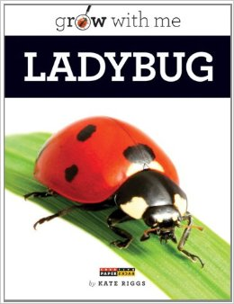 grow with me ladybug