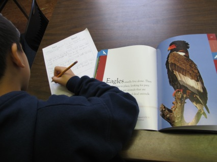 Nonfiction Picture Book Wednesday: A celebration of nonfiction enthusiasm