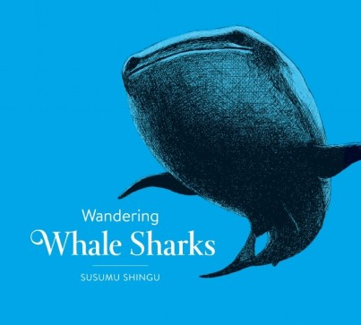 Wandering Whale Sharks  Monday April 20th, 2015 #IMWAYR There's a Book for That