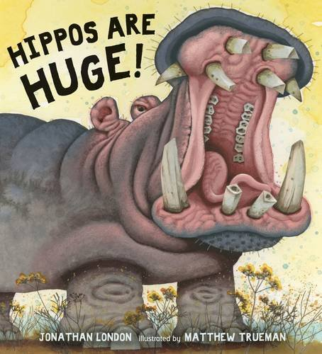 Nonfiction Picture Book Wednesday: Hippos are Huge! There's a Book for That