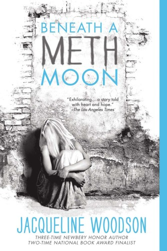 Beneath a Meth Moon Top Ten Books on My Summer TBR list for 2015 There's a Book for That