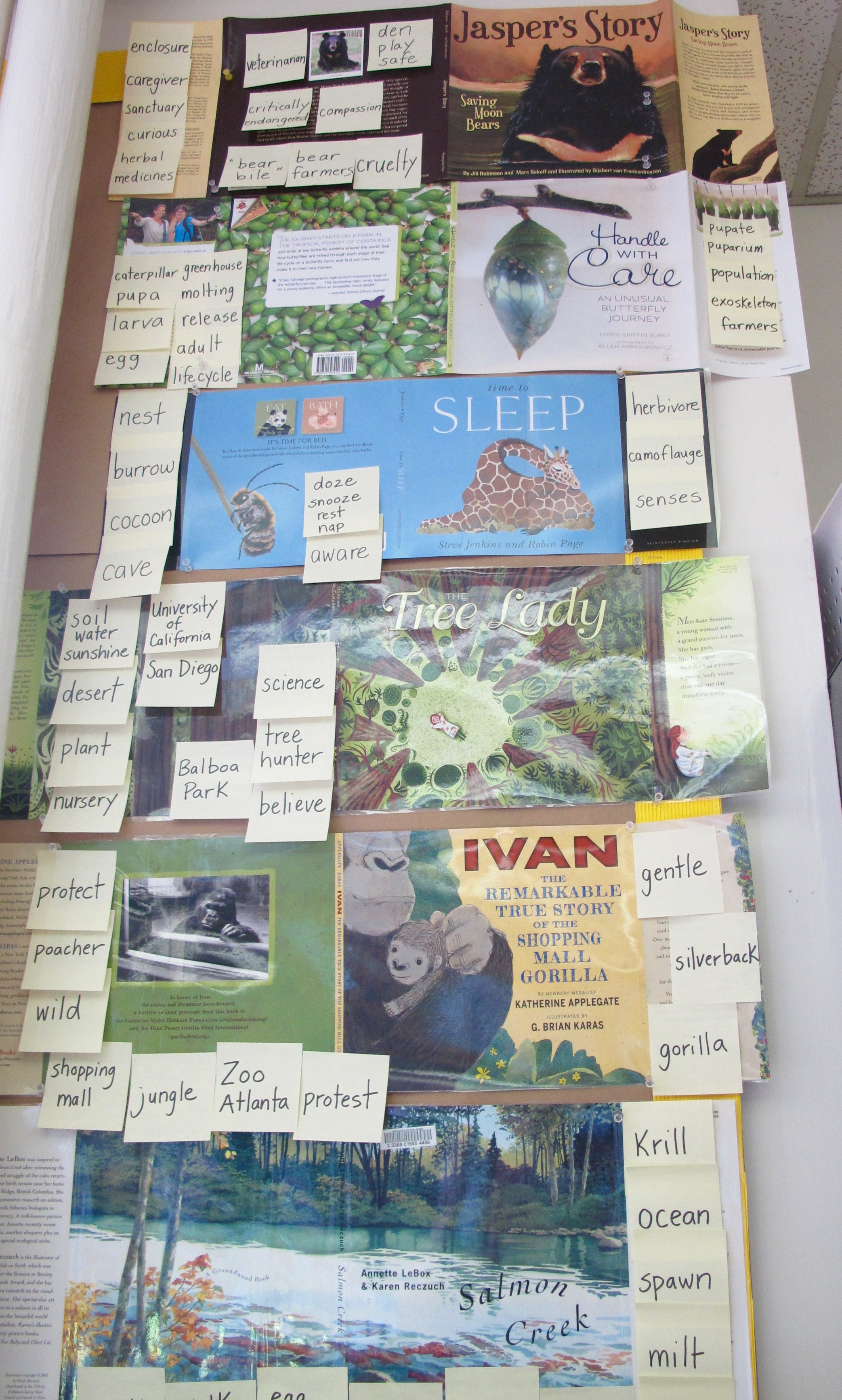A Year of Nonfiction Picture Books Revisited