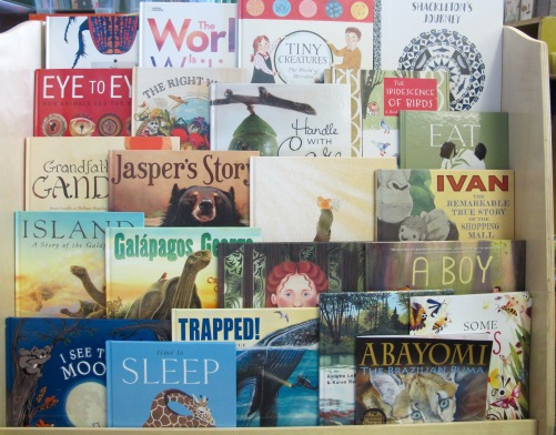 A Year of Nonfiction Picture Books Revisited There's a Book for That