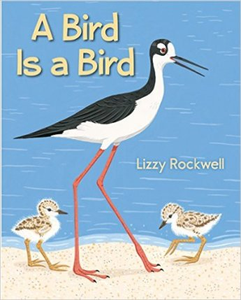 A Bird Is a Bird Nonfiction Picture Book Wednesday: Some beginning read alouds
