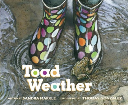 Toad Weather Gift Books 2015