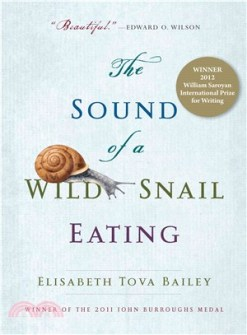 the-sound-of-a-wild-snail-eating