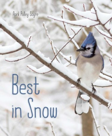 best-in-snow