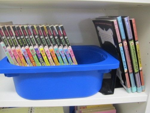 Summer Maintenance in the Classroom Library. Step 2: Additions