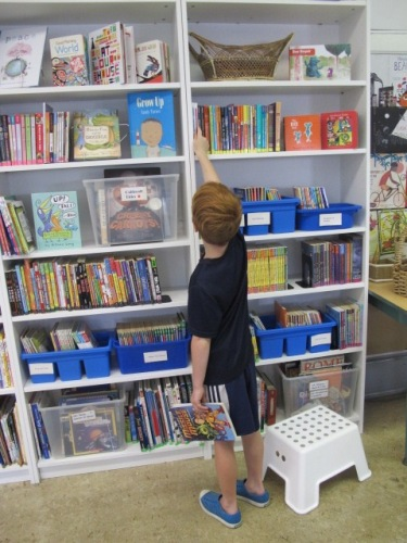 Summer Maintenance in the Classroom Library. Step 4: The Details There's a Book for That